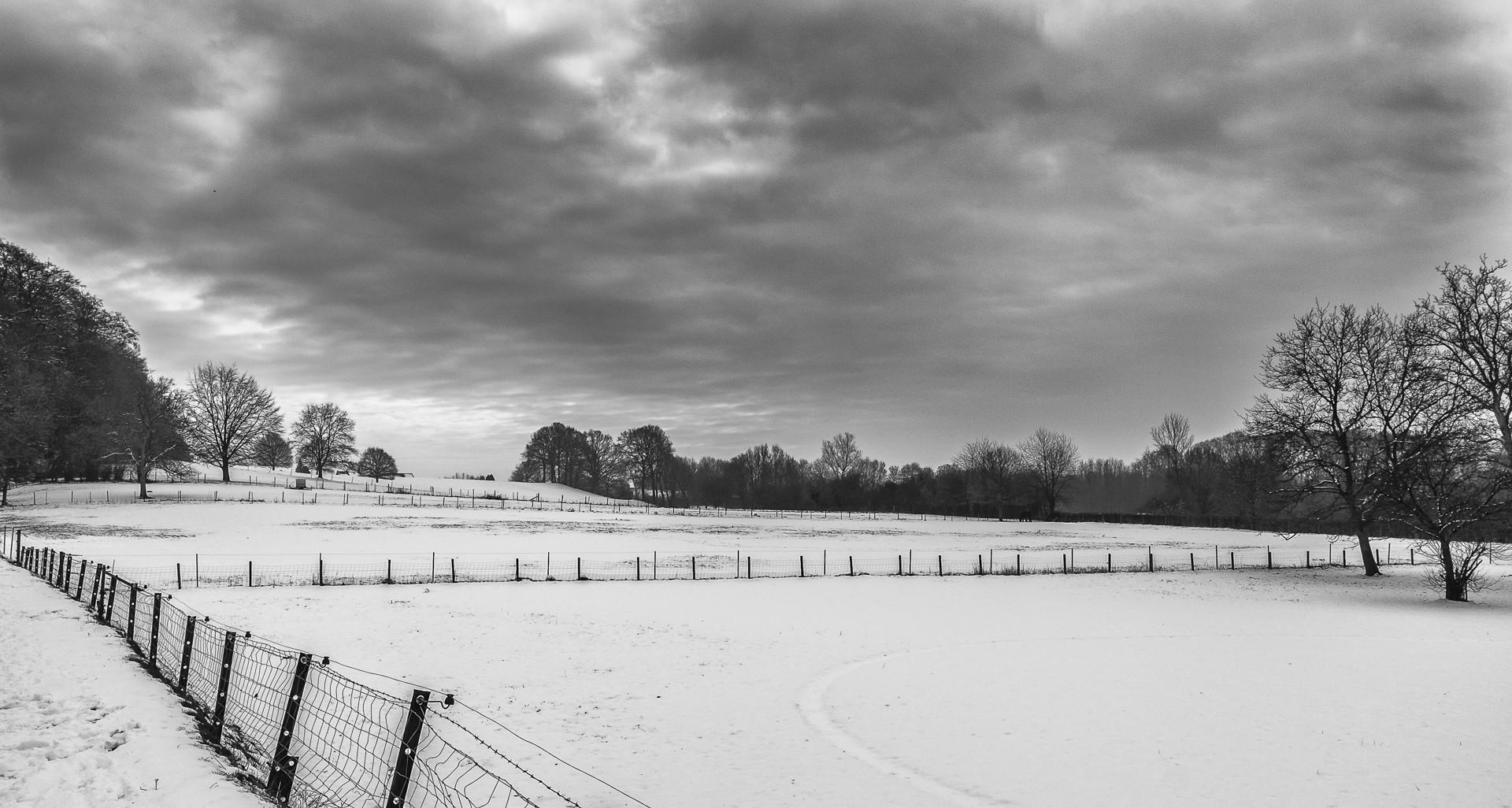Roland-5.-Winter-30