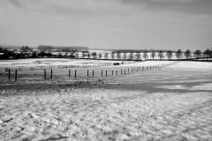 Roland-11.Sneeuw-29